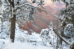 Grand Canyon 79 (Krasivaya Liza) Tags: grandcanyon grand canyon national park canyons nature natural wonder az arizona holiday christmas 2016 snowy winter cliffs cliffside edgeofcliff