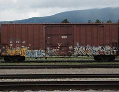 SIGHT, TRIK ONE, KANE TVCK (YardJock) Tags: railroad graffiti spraypaint boxcar piece freighttrain benching paintedsteel boxcarart benchreport