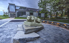 Nittany Lion & Academic Commons, 2014.05.28 (Aaron Glenn Campbell) Tags: sky sculpture building architecture clouds reflections campus evening pennsylvania lehman grounds hdr nittanylion nepa edr luzernecounty backmountain 5xp academiccommons psuwb pennstatewilkesbarre abramnesbittiii