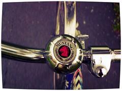 Fastest Mustang in the world (kjellmeister1) Tags: road blue red horse car bicycle metal shine den fast tire jag arrow mustang asfalt kallar pilen snabba