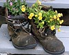 one ambition - to retire before it becomes essential to tweet (ellynwriting - slowmode) Tags: flower tweet retire workshoes 10faves paralleluniverses