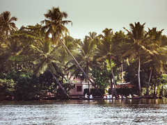 india(2)_stephaniedroemer2014 (Stephanie Droemer) Tags: travel blue people india green water yellow river photography boat palmtree stephaniedroemer stephaniedrmer