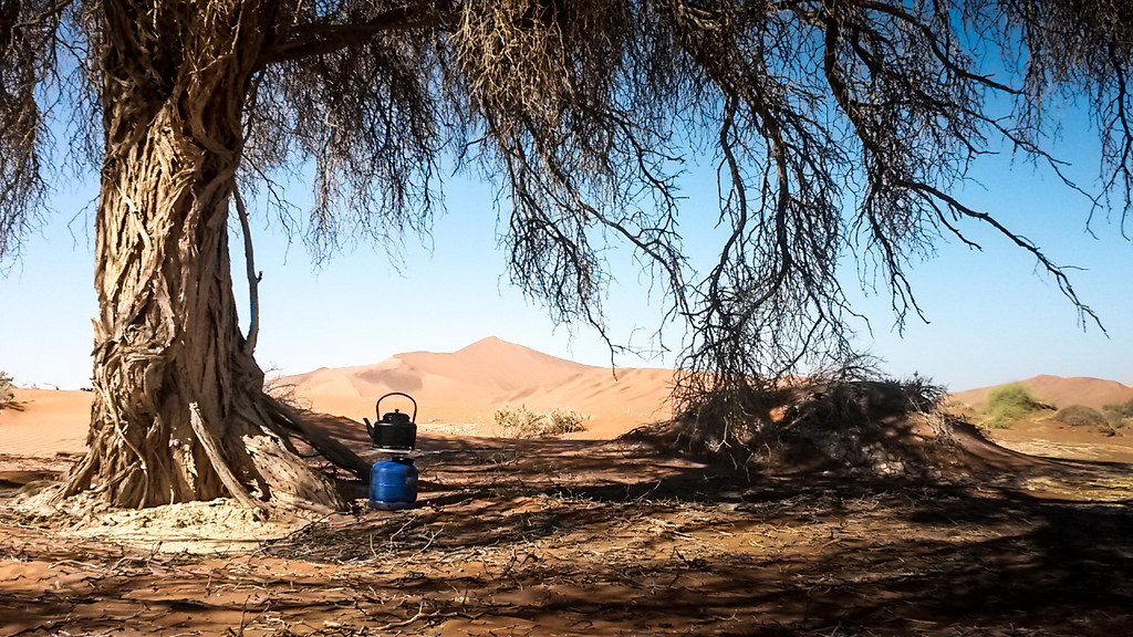 Coffee Time, Dead Vlei, Namibia