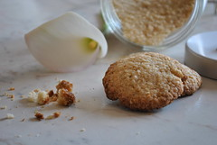 Oat biscuits (pasta frolla) Tags: cookies breakfast sugar oatmeal butter snack eggs flour