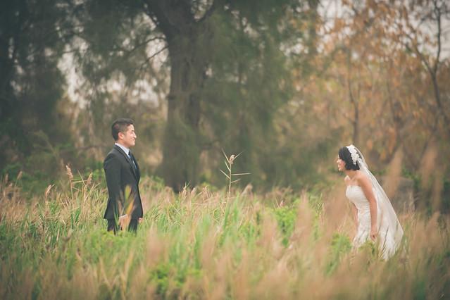14645553273 df4a250fb4 z 台南婚紗景點推薦 森林系仙女的外拍景點