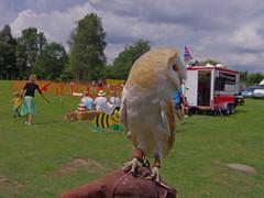 987-02L (Lozarithm) Tags: eastonroyal mikegaleshawkingdays birdsofprey owls falconry kx 1224 smcpda1224mmf40edalif pentax zoom