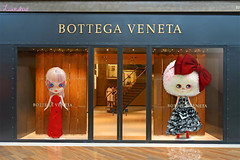 blythe meets bottega veneta . almost .