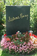 140817_Zentralfriedhof_155 (weisserstier) Tags: vienna wien celebrity cemetery grave grab zentralfriedhof prominenter experte marcelprawy