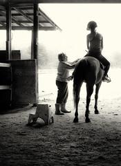 Adjusting the Stirrups (B&W) (1mpl) Tags: horses bw equestriancenter princetontexas northtx niksilverefexpro olympusomdem1
