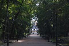 2014_0819_21063400 (Artem Gukasov) Tags: lviv ukraine fujifilm lvov україна украина львов xq1 львів fujifilmxseries fujiclub ujifilmxq1 fujifilmua