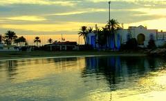 Amaneciendo 3 (camus agp) Tags: sea sunrise reflections mar mediterraneo playa palmeras amanecer palmtrees dawning playas mediterraneansea marbella reflejos amaneciendo