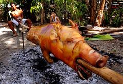 philippines (garyscat) Tags: pig antique philippines bamboo pork bora lechon visayas aklan panay philippinesthebeautiful