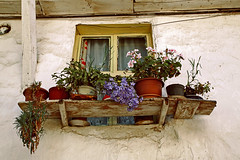 The window of a village house (s_gulfidan) Tags: flowers window rural 100club 300faves