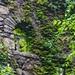Hearthstone Castle Danbury Connecticut