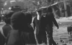 Cementerio General/ Septiembre. (Demencia-Explosiva.) Tags: chile santiago de los riot cops general cementerio septiembre recoleta por 1973 desaparecidos humanos marcha golpe estado politicos derechos encapuchados acab dictadura detenidos conmemoracion ejecutados reinvicacion