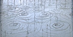 """""""Rain Season"""" Wuhan 2014 ink on paper 50 x 70  cm China • <a style=""""font-size:0.8em;"""" href=""""http://www.flickr.com/photos/51888469@N05/15084238436/"""" target=""""_blank"""">View on Flickr</a>"""