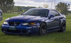 SSonic (GTB Photos) Tags: blue ford cobra snake great lakes sonic mustang terminator stance kots dragaway