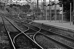 261/365 Cambio de camino / Change the road (Txemari Roncero) Tags: bw blancoynegro nikon bn ferrocarril 55200 vas project365 proyecto365 nikond3100