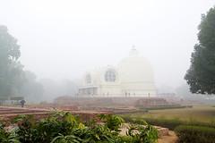 India_0528