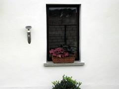 windows (mauertrocken) Tags: windows wand streichen grieben löwenbergerland fassadenfarbe