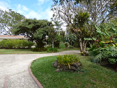 P1010832 (js43324) Tags: paisajes landscapes costarica paraso lankester jardnlankester