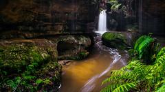 In the Glen (scotty-70) Tags: blackheath bluemountains sony a7 nsw waterfall