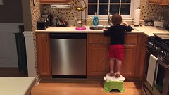 """Paul Washes the Dishes • <a style=""""font-size:0.8em;"""" href=""""http://www.flickr.com/photos/109120354@N07/32987238291/"""" target=""""_blank"""">View on Flickr</a>"""
