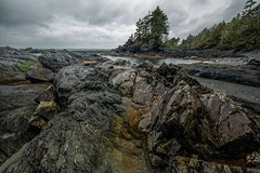Botany Bay Beach (photobydave@gmail.com) Tags: botanicalbeach botanybay botanybeach geology rockformation vancouverisland britishcolumbia portrenfrew canada pacificnorthwest beach landscape cloudy rain lowtide hiking daytrip pacificmarinecircleroute