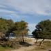 Laghi Alimini - la spiaggia
