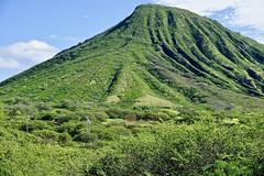 Koko Head (maspangler1) Tags: kokohead hawaii oahu crater trail