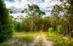 Lot 107, Duns Creek Road, Duns Creek NSW