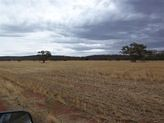 Farm 1631C Quarry Road, Myall Park NSW