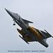 Czech Air Force 9239 - Saab JAS 39 Gripen 9239