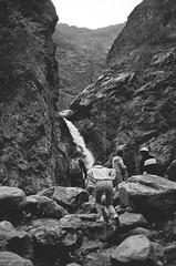 eaton canyon falls. (howard-f) Tags: mountain analog waterfall losangeles hiking canyon grainy pasadena southerncalifornia agfa sangabrielmountains pasadenacalifornia expiredfilm filmisnotdead filmwaster convertedblackandwhite agfaoptimasensorflash