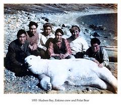 1953 HB Eskimo crew and Polar Bear (CORRECTED 400dpi 24-bit) (cobbbr) Tags: travel hunting polarbear 1950s cobb caption corrected eskimo 1953 hudsonbay canadacan imagetypephoto imagesizeframe