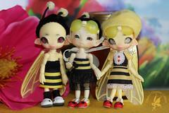 3 Sweet Lil' Bee Sisters (chartar_69) Tags: gid charlesstephan charlescreaturecabinet linmurasakidesign lindastephan cccbjd glowinthedarkresin glowinthedarkfireflyfaeries cccfireflyfaeries beewithme