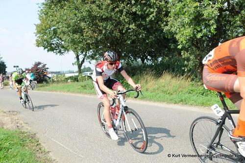 Geel Oosterlo  (92)