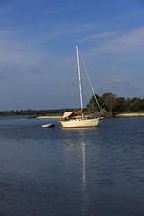 IMG_4956 (Jaemes Sister) Tags: water boats fishing airplanes sailboats palmettos ospreys