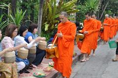 The lady in blue prepares for the next monk (oldandsolo) Tags: southeastasia earlymorning buddhism tourists lp laos luangprabang buddhistmonk laopdr makingmerit unescoworldheritagecity buddhistreligion takbat buddhistfaith morningalmsgivingritualluangprabang morningalmsgivinginluangprabang