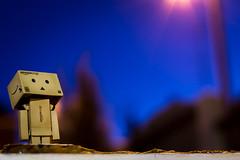 Pondering Danbo (vandinglewop) Tags: street blue light night amazon thoughtful flare pondering danbo