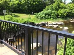 Brewery Creek inflow from Ottawa