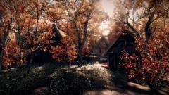 A Beautiful Day (~Scimo~) Tags: skyrim screenshot trees sunlight fantasy village landscape enb leaves laub bäume dorf sonnenlicht landschaft hütte cottage