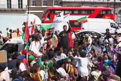 IMG_6844 (JetBlakInk) Tags: parliament rastafari downingstreet repatriation reparations inapp chattelslavery parcoe estherstanfordxosei reparitoryjustice