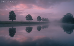 A Misty River Eden (.Brian Kerr Photography.) Tags: morning bridge trees mist english misty reflections landscape landscapes cumbria rivereden lazonby briankerrphotography