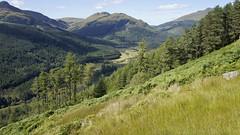 2014.6522a Lochgoilhead, Tuesday 26 August 2014. (jddorren08) Tags: scotland argyll lochgoilhead landscape scottishscenery scottishhills scottishmountains cruachnammult stobliath sonynex5 sigma19mmf28 daviddorren jddorren