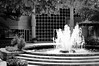 bw fountain rikenon 50 1.4 (ChristianRock) Tags: blackandwhite bw fountain garden 50mm pentax kr 50mmf14 rikenon ricoh50mmf14 rikenon50mmf14 pentaxkr rikenonxr50mmf14