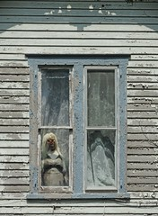 """Mummy's Home!"":  Tarboro, Edgecombe County, North Carolina (EdgecombePlanter) Tags: mannequin nc victorian northcarolina haunted creepy carolina mummy deteriorated shocking lacecurtains edgecombe"