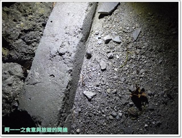 台東旅遊景點夜訪小野柳釋迦冰淇淋image016