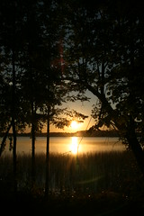 IMG_4371 (krissos.photography) Tags: trees sky lake nature minnesota sunrise landscape photography dawn lightandshadow between naturephotography islandlake 2014 seasonsummer monthseptember rochert instagram rochertminnesota