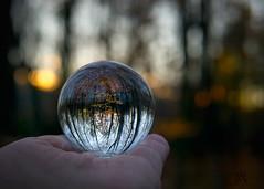 I see fall in my crystal ball (marianna.armata) Tags: autumn sunset cold fall glass forest ball season woods hand crystal sphere mariannaarmata p2690364